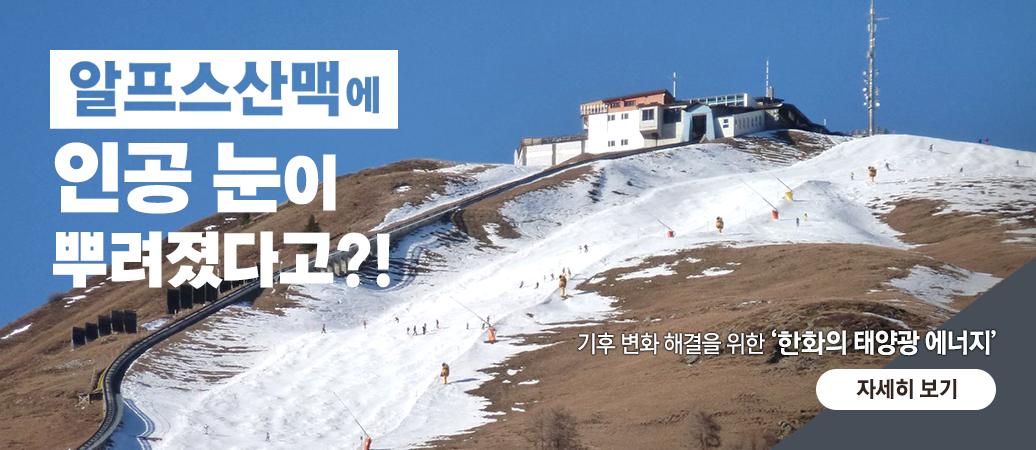 유난히 따뜻했던 겨울<br>눈이 다 어디로 갔을까?