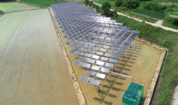 영농형 태양광 발전소