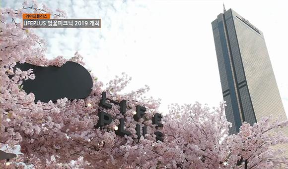 한화생명 - LIFEPLUS 벚꽃피크닉 2019 개최