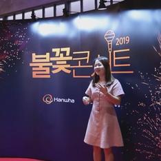 2019 한화불꽃콘서트