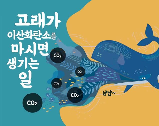 고래가 이산화탄소를 마시면 생기는 일?